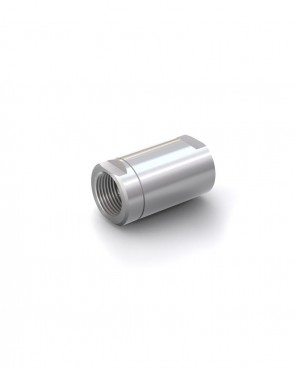 "Valvola di ritegno acciaio inox - G2"" femmina / G2"" femmina - max. 250 bar - DN 50 mm"